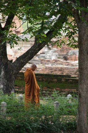 monk-184390_1920