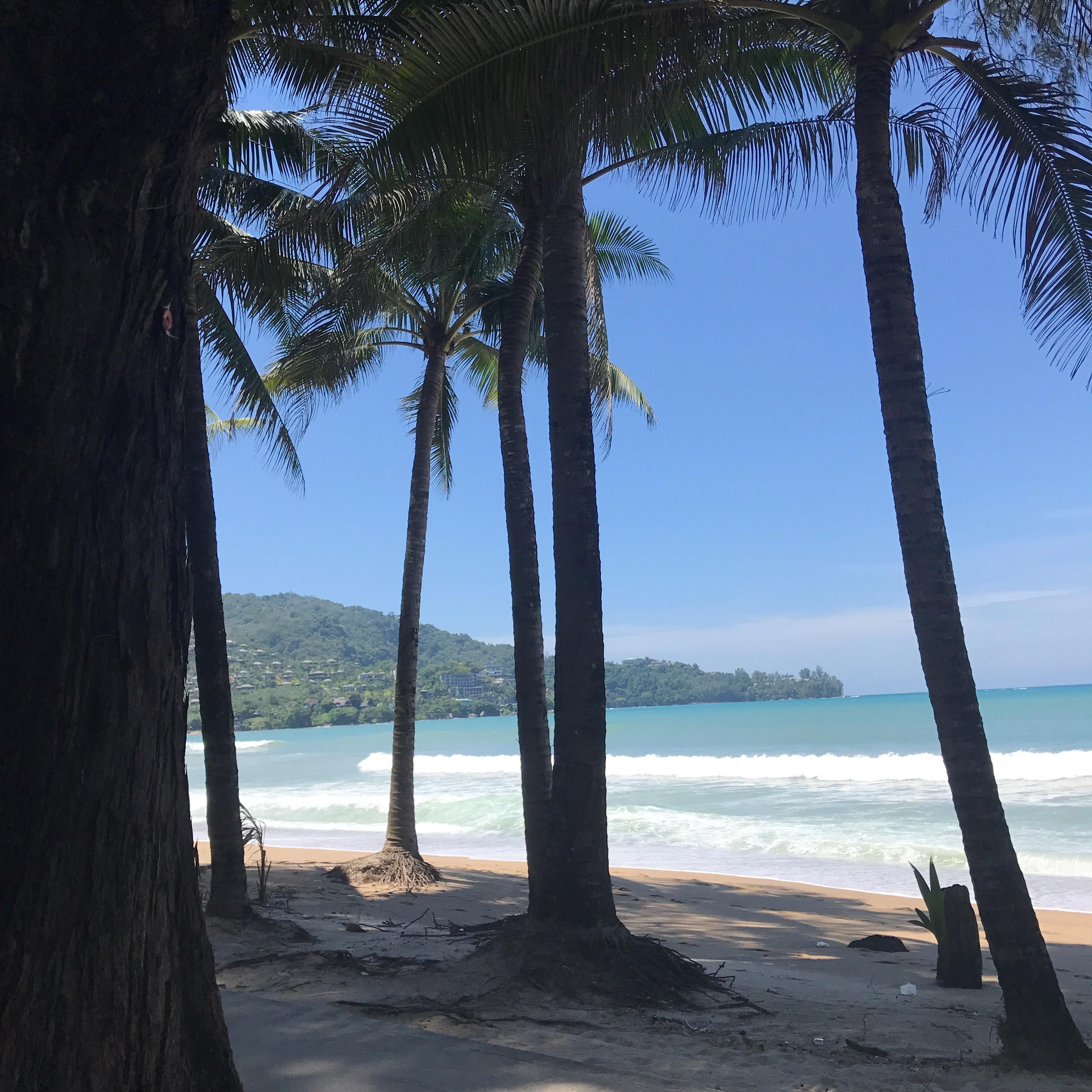 We Love Kamala Beach! Palmerna är så exotiska för oss nordbor.